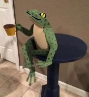 sharsum_frog